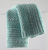 turq dishcloth